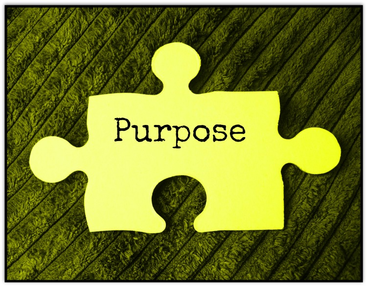 Purpose is a Puzzle